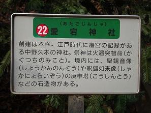 2011_0115_141810-DSC02193.jpg
