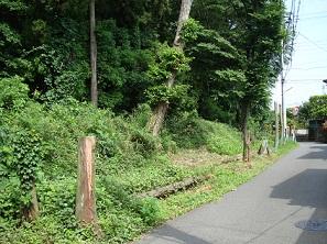 2011_0609_084237-DSC03207.jpg