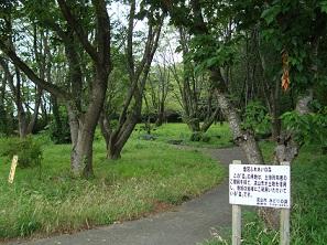 2011_0726_074229-DSC03736ふれあいの森