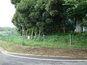 2010_0714_0859十余二ゴルフ場 (2)