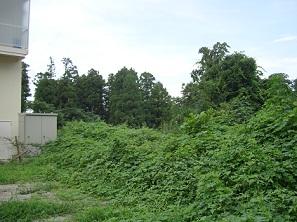 2010_0714_0928八木