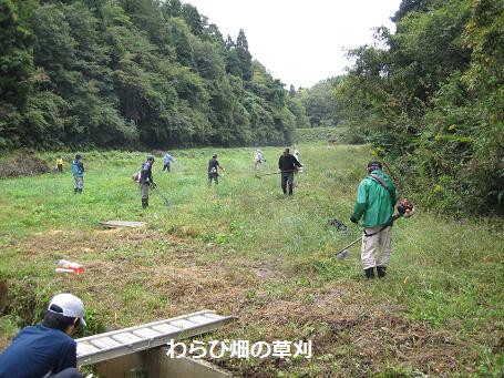 草刈ボランティア4