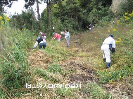 草刈ボランティア3