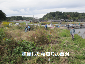 草刈ボランティア1