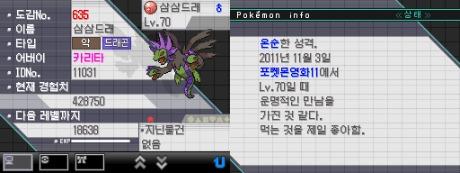 韓国サザンドラ1