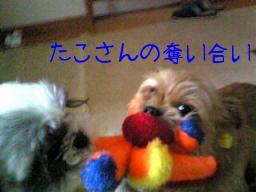 なな&ふく 384.jpg