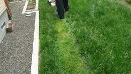芝刈り中2.JPG