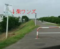 柴ワンズ通過.JPG