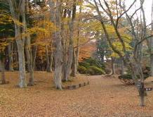 香雪園.JPG