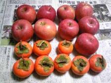 リンゴ&カキ.jpg