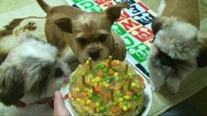 ごはんケーキ2.JPG