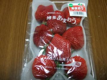 20120225苺