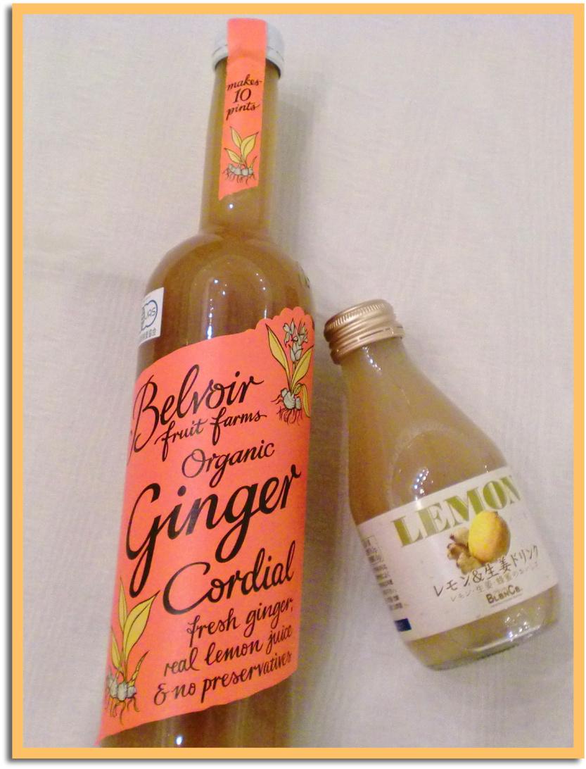 12月19日 ginger2