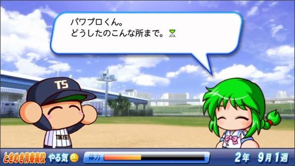 pawa_bor.jpg