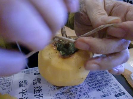 H24ナベと干し柿 (1)