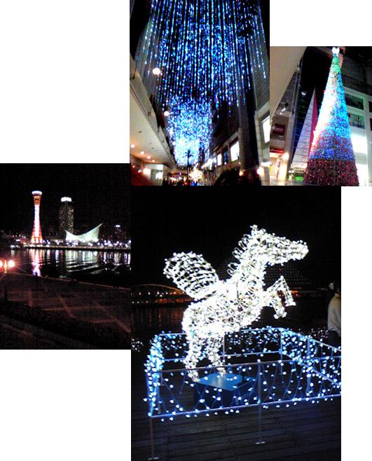 2011_12_07_haba_as.jpg