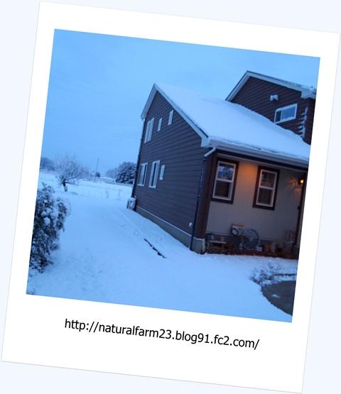 初雪3縮小後