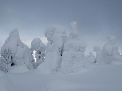 蔵王温泉スキー場にて