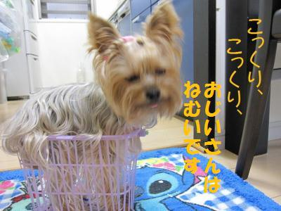 ・誉convert_20110929211043