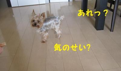 ・狙convert_20111013204804