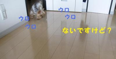 ・托シ狙convert_20111013210545
