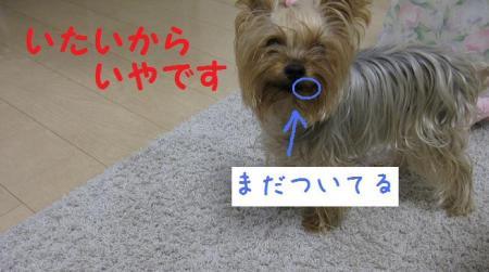 ・托シ狙convert_20111020210758