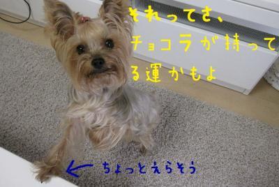 ・狙convert_20111024233539