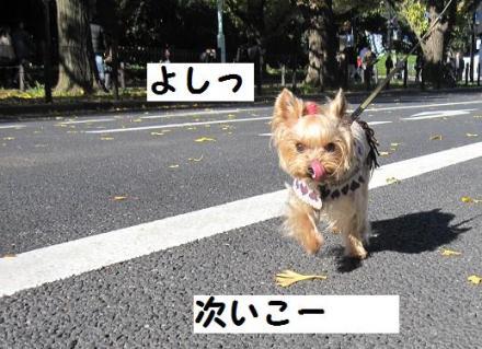 ・狙convert_20111205212425