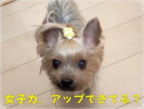 ・狙convert_20120107192151