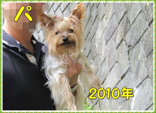IMG_2291_convert_20120315215344.jpg