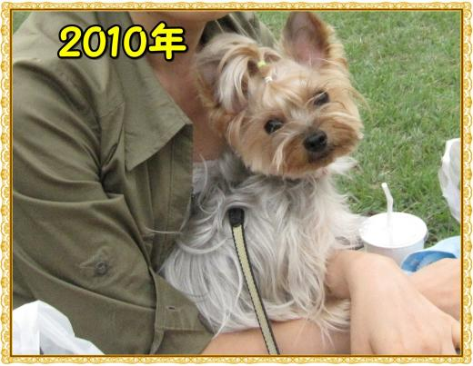 IMG_2420_convert_20120315220047.jpg