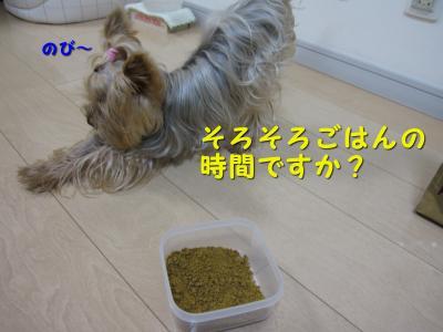 IMG_4367_convert_20111101204627.jpg