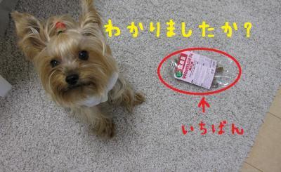 IMG_5297_convert_20111025203616.jpg