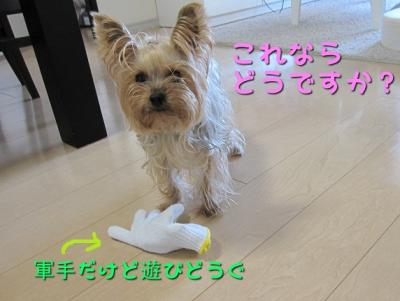 IMG_5507_convert_20111029214544.jpg