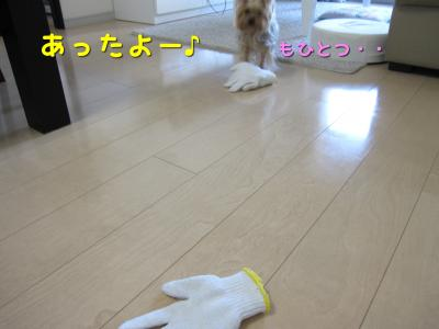 IMG_5520_convert_20111029221253.jpg