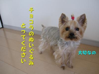 IMG_7560_convert_20111125230726.jpg