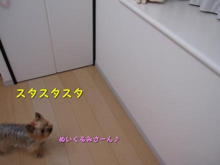 IMG_7917_convert_20111128201627.jpg