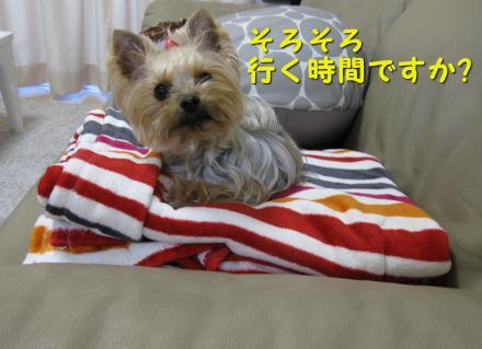 IMG_8733_convert_20111207200719.jpg