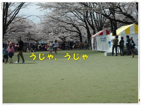 P4076339_convert_20120407222856.jpg