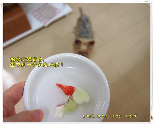P4116848_convert_20120412210336.jpg