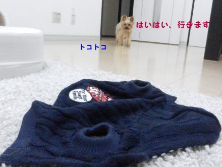 PC210018_convert_20111221202136.jpg