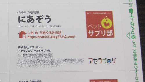 IMG_0025_20111109002159.jpg