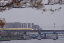 4月16日・ドクターイエロー(1)