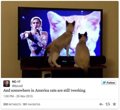 MileyCyrus_cat1