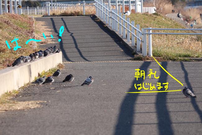 046-ti-2.jpg