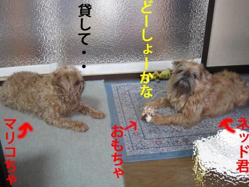 20_convert_20120412084823.jpg