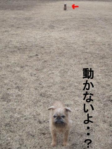 2_convert_20120116074106.jpg