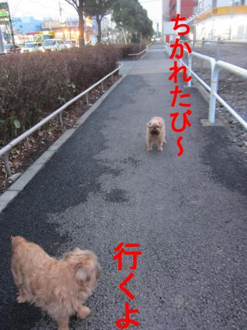 2_convert_20120302080357.jpg
