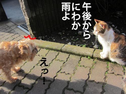 2_convert_20120312090124.jpg