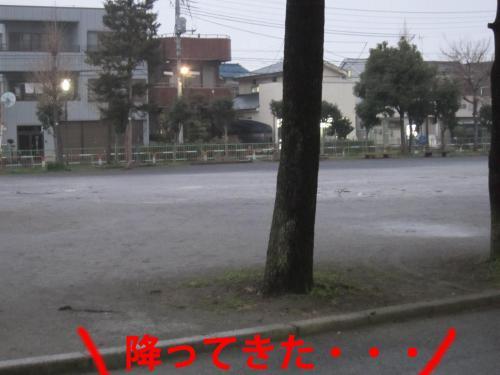 2_convert_20120319084759.jpg
